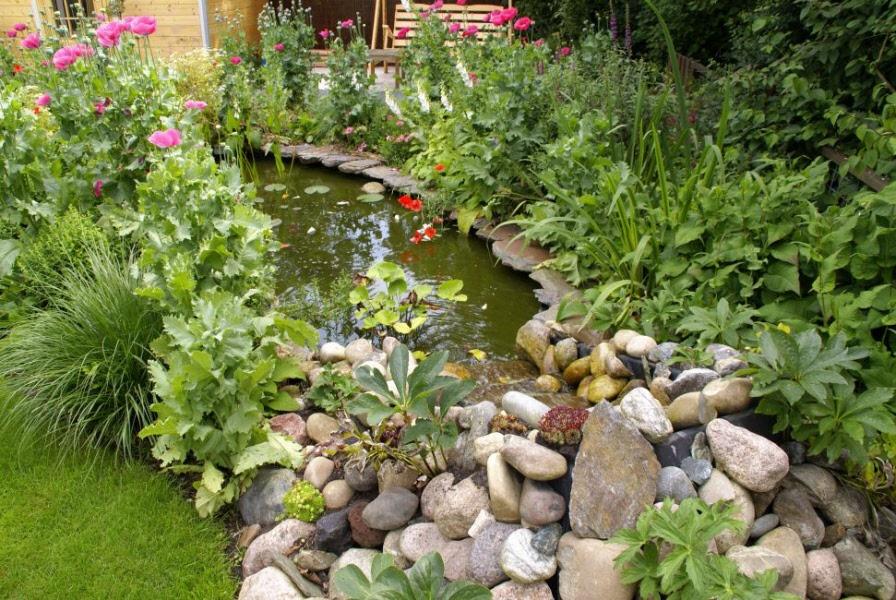 Tuin met natuurlijke vijver en waterloop vijverbeplanting for Tuin en vijver