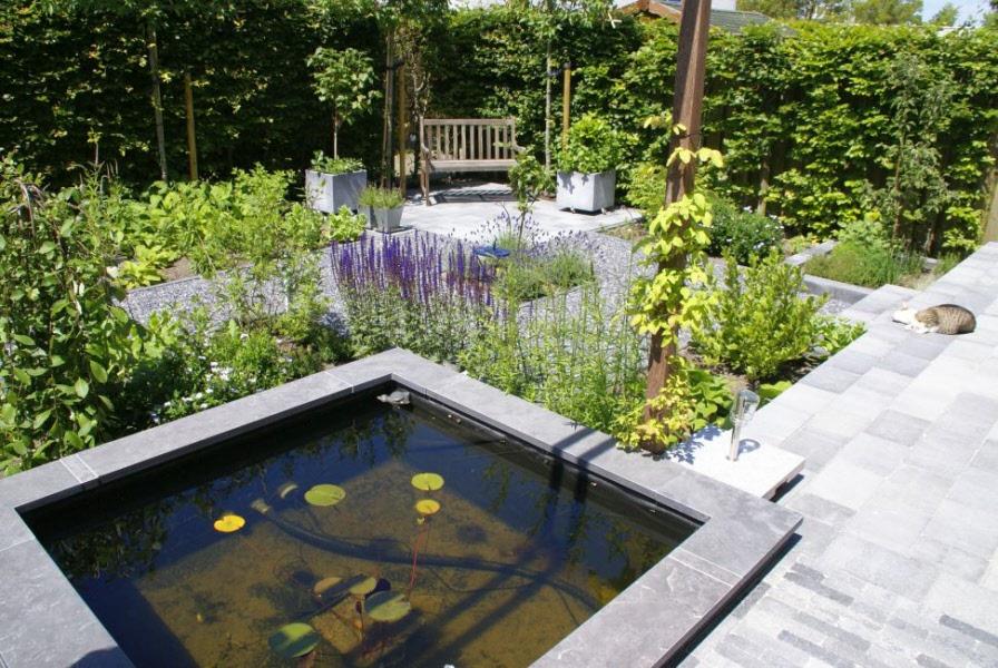 strakke moderne tuin met vijver