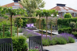 Tuinideeen En Fotos Voor Tuinen Tot 100m2 In Almere Lelystad Huizen