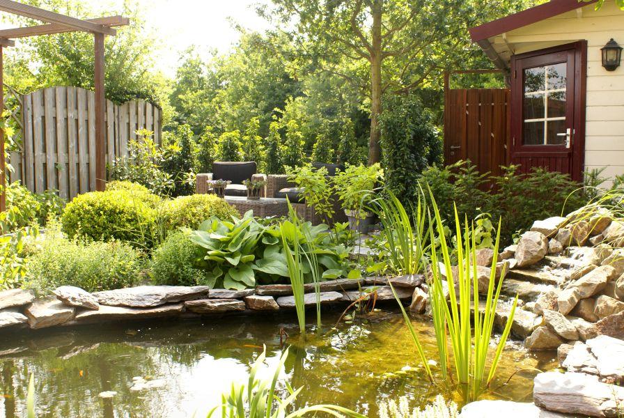 Vijver ontwerp tot aanleg ronde strakke natuurlijke vorm for Tuin en vijver